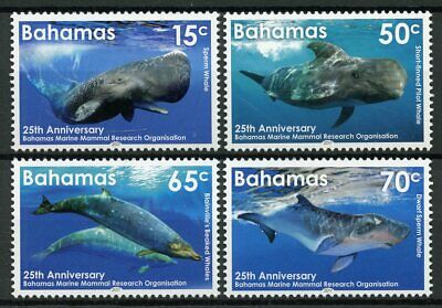 Bahamas 2017 MNH Marine Mammal Research Pt II Whales 4v Set Animals Stamps