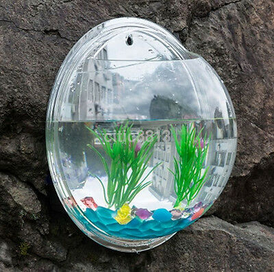 Creative Fish Tank Aquarium Plant Wall Mount Hanging Pot Bowl Bubble Aquarium HW