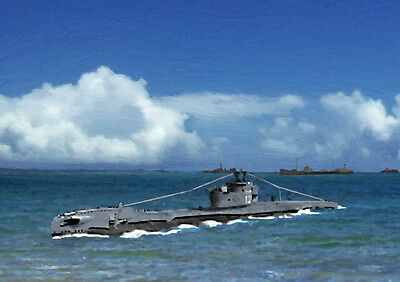 Hms Tireless P327 - Limited Edition Art (25)
