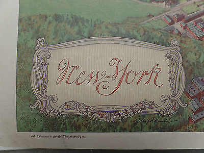 Wall chart New York 1911 topographic map vintage / antique bird eye view xl
