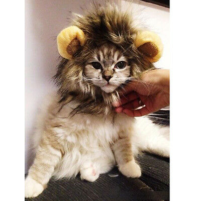 Pet Hat Costume Lion Mane Wig For Cat Dog Party Halloween Dress up with Ear New