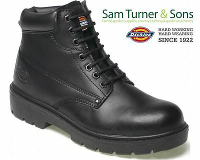 Mens Dickies Antrim Safety Work Boots Black  Sizes 4 - 12 Steel Toe Cap FA23333