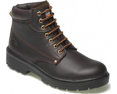 Mens Dickies Antrim Safety Work Boots Brown  Sizes 4 - 12 Steel Toe Cap FA23333
