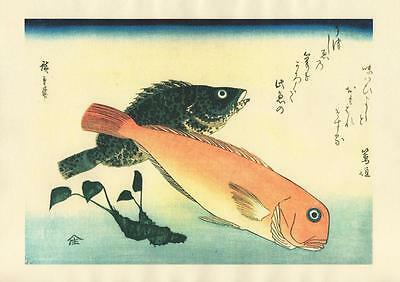 Japanese Reproduction Woodblock-Fishes #82 by Ando Hiroshige on Parchment Paper