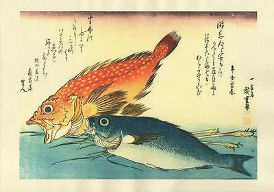 Japanese Reproduction Woodblock-Fishes #86 by Ando Hiroshige on Parchment Paper