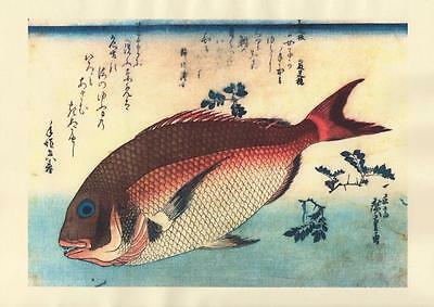 Japanese Reproduction Woodblock-Fishes #88 by Ando Hiroshige on Parchment Paper