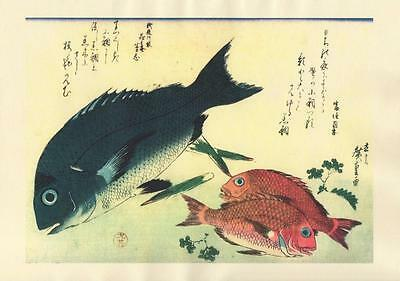 Japanese Reproduction Woodblock-Fishes #90 by Ando Hiroshige on Parchment Paper
