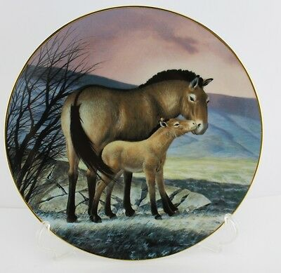 """""""Last of Their Kind - The Endangered Species Collection"""" #10 Przewalskis Horse"""