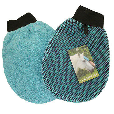 Coat Shine Mitt Horse And Equestrian