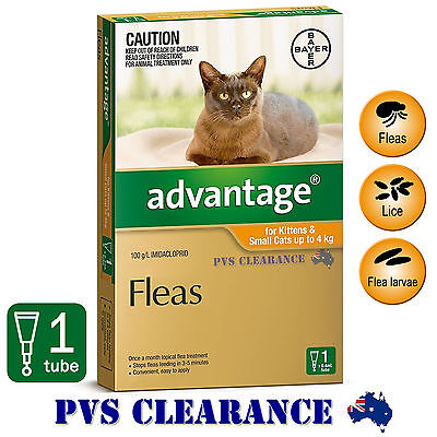 Advantage Orange Single for Kittens & Cats Up To 4 kg -  1-Pack - Kitten Flea