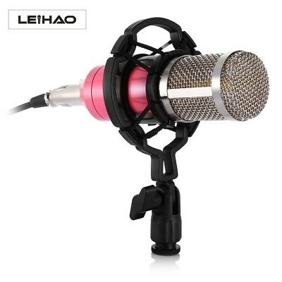 LEIHAO Universal Professional Wired Condenser Microphone With Mic Shock Mount