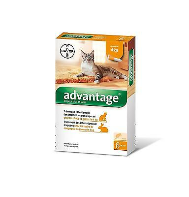 Advantage 40 Chat Lapin 0 4 kg 6 pipettes antiparasitaires