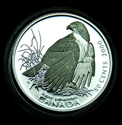 2000 Red-talied Hawk - 50¢ silver BU proof from the Birds of Prey series