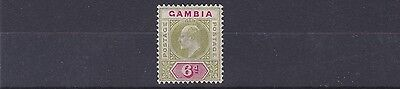 Gambia  1904 - 06    S G  64    6D   Olive Green & Carmine             Mh