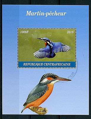Central African Republic 2016 CTO Kingfishers 1v M/S Kingfisher Birds Stamps