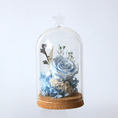 Clear Glass Cloche Display Jar Bell Flower Preservation Vase Dome Lid Bottle
