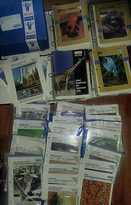 Wildlife Fact File Binders 1000 Cards Animals Home School Learning Educational