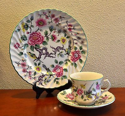 "James Kent Old Foley ""CHINESE ROSE"" Tea Cup TRIO.  Spring Has Sprung!"