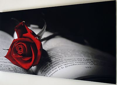 RED ROSE CANVAS WALL ART PICTURE LARGE 18 x 32 inch  READY TO HANG
