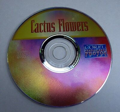 Cactus Flowers Corel Professional Photos CD Rom PCD Format -100 High Def