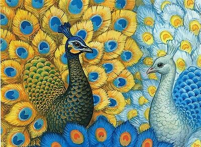 PEACOCK  PARADISE needlepoint tapestry WOOL KIT 80 X 60 CM- SALE PRICE! WOW!