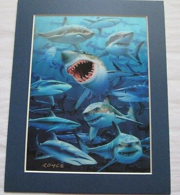 Beautiful Matted Sharks 3D Lenticular Hologram Art Picture Poster Print
