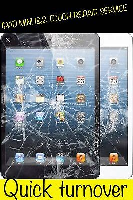 Apple iPad Mini CRACKED GLASS DIGITIZER TOUCH SCREEN REPAIR REPLACEMENT SERVICE