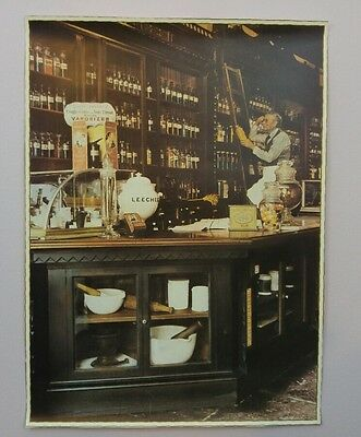 French Apothecary Pharmacy Medicine Vintage Store Antique 12X16 Photo Print