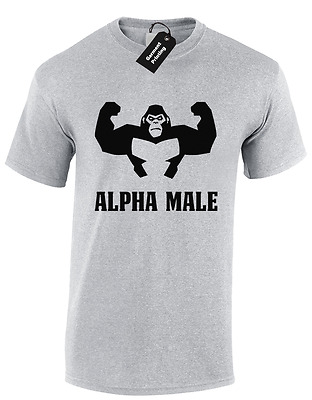 Alpha Male Mens T Shirt Tee Gym Bodybuilding Training Top Mma Workout Fitness