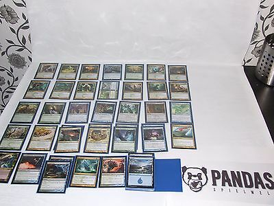 MtG Magic the Gathering Simic Evolve Deck