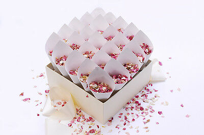 25 Confetti Cones With Stand/box With Real Dried Petal Confetti - Biodegradable