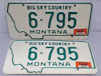 Montana License Plate Pair - 1968 with 1969 Tags, 6-795, Gallatin County Big Sky