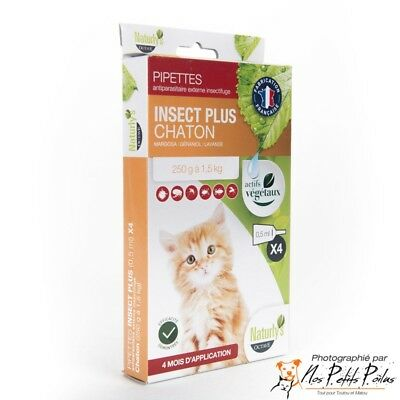 Insect plus chaton Naturly's Octave