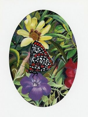 BUTTERFLY Pack of 100 original lithograph prints bulk wholesale resale flowers