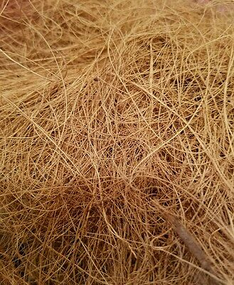 Coconut fiber bird nesting material Finches canaries 1 pound box