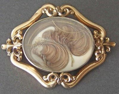 Antique Large Victorian Mourning Plume Work Hair Brooch Gold Plated Pin Pendant