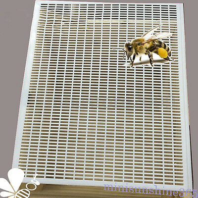 Beekeeping Bee Queen Excluder Trapping Grid Net Tool Equipment Septum