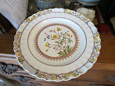 "Lot of 4 Copeland Spode Buttercup  Dinner Plate(s) 10 5"" Excellent Old Mark"