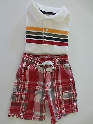 Toddler Boys Gymboree SS Shirt & Matching Shorts Outfit size 2T /24mo. /Excellen