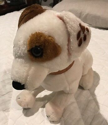 Jack Russell Terrier Plush Dog  Wishbone Tagged Sitting