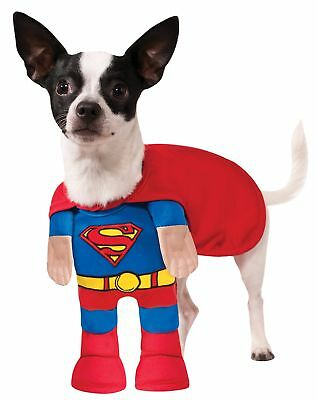DC Comics Superman Pet Costume, XL