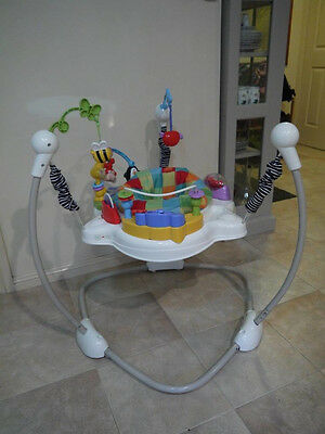 Fisher Price Discover and Grow Jumperoo Bouncer