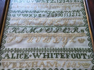 "A Victorian Sampler "" Alice Whitefoot 1883"". Framed. Good condition"
