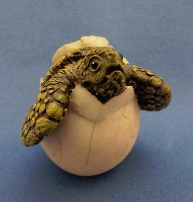 Baby Sea Turtle Hatching From Egg Figurine