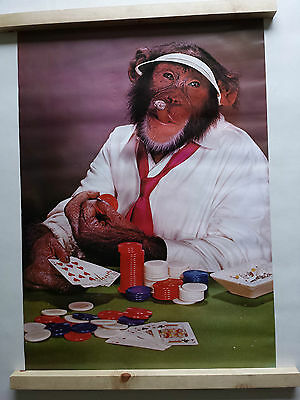 Poker Face Chimpanzee Poster Large Vintage 1978 Minerva 10 1603 Was Unopened