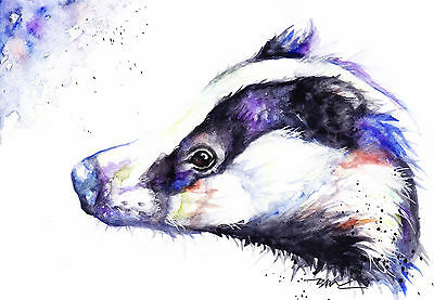Original Watercolour Badger Painting by Artist Be Coventry Wildife Animal Art