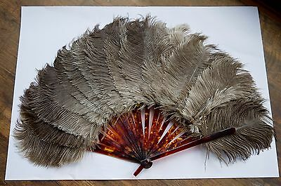 Antique Victorian 1800's - Tortoiseshell Ostrich Feather Fan - Vintage French