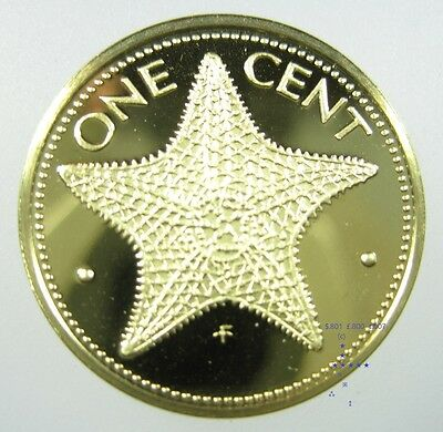 Bahamas Islands 1 Cent 1966 - 1985 Brass Gem Proof Star Fish World Coin ✪