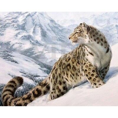 16X20'' Snow Leopard DIY Acrylic Paint By Number Kit Oil Painting On Canvas