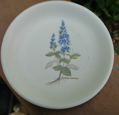 Vintage Poole Pottery England Country Lane Hedgerow Pin Dish *Veronica Teocrium